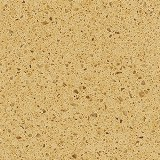 Cambrian-Gold_sm